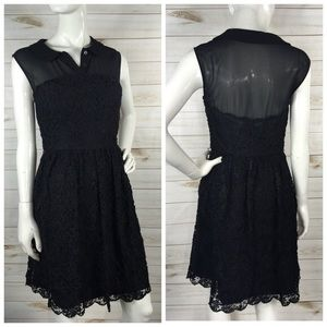 TED BAKER Black Lace Collared Dress
